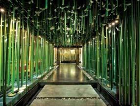 竹子装修餐厅走廊效果图