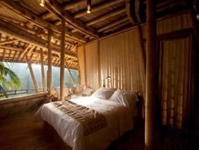 丛林中的竹子装修房子图片